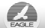 Eagle | Nepo